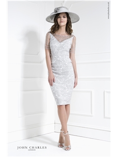 Silver Dress with Detailed Sleeve 26054
